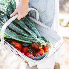 How to Build an Edible Garden
