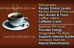 Cooler days and nights here in Tampa Bay means let's all drink more Hot Tea and Coffee, shall we ? Let's all reach for Organo Gold Healthy Beverages with Infused Ganoderma Herbal Extract. Green Tea Vs Coffee, Coffee Jitters, Raise Blood Pressure, Coffee Health, Increase Stamina, Coffee Benefits, Coffee Branding, Coffee Packaging, Herbal Extracts