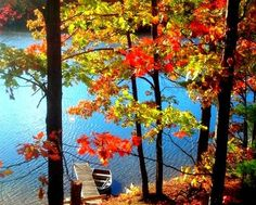 VRBO.com #3003260ha - Enjoy Your Holidays up North!!