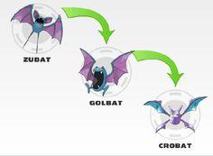 Zubat evolution