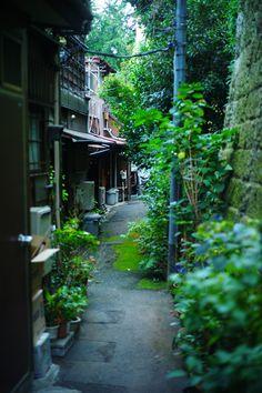 Back street of Hongo 3 Bunkyo city Tokyo, Japan 本郷三丁目菊坂通り路地裏 Places Around The World, Around The Worlds, Beautiful World, Beautiful Places, Japan Street, Tokyo Japan, Tokyo City, Japan Sakura, Shinjuku Japan