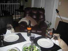 Date night.  ATTACKOFTHECUTE.COM