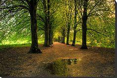 England - Wiltshire