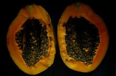 Inside papaya