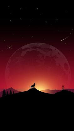 Wolf howling in the night You are in the right place about wallpaper retro Here we offer you the most beautiful pictures about the wallpaper cat you are looking for. When you examine the Wolf howling in the night part of the picture you can … Landscape Wallpaper, Scenery Wallpaper, Wallpaper Pictures, Nature Wallpaper, Beautiful Wallpaper, Wolf Wallpaper, Galaxy Wallpaper, Wallpaper Lockscreen, Wallpapers Android