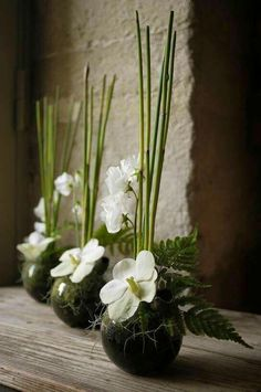 Ikebana white & green - Ikebana white & green How to Have the Bride Bouquet Ikebana Flower Arrangement, Ikebana Arrangements, Modern Flower Arrangements, Wedding Flower Arrangements, Flower Centerpieces, Flower Decorations, Wedding Centerpieces, Wedding Flowers, Wedding Bouquets