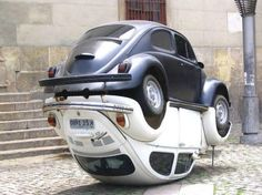 Rare footage of the fabled VW Bug mating ritual