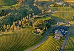Black Barn Vineyards is a small exclusive vineyard in Hawkes Bay New Zealand. It specialises in high quality estate grown wines, luxury accommodation, lunches, concerts and small functions all on a spectacular vineyard site with superb views. New Zealand Wedding Venues, Napier New Zealand, Wanaka New Zealand, New Zealand Food, Lake Wanaka, Wine Bucket, Black Barn, Wine Sale, Worldwide Travel