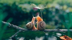 Tara — sharing an umbrella with a friend