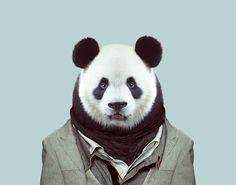 Giant Panda (Ailuropoda Melanoleuca) Zoo Portraits by Yago Partal