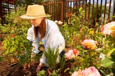 Prevent Pain When Gardening