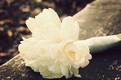 simple bouquets are beautifull. Anna Pawlewska Protography www.facebook.com/annafotografuje