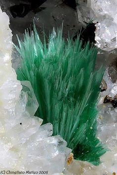 Malachite  Photo Copyright © Chinellato Matteo  - This image is copyrighted. Unauthorized reproduction prohibited.  Locality: Tingherla Mine, Palù del Fersina, Mocheni Valley, Trento Province, Trentino-Alto Adige, Italy  5.38 mm green tuft of Malachite. Collection A.Mattiello photo M.Chinellato