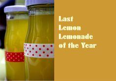 Lemonade with Lemon  www.babyrockmyday.wordpress.com
