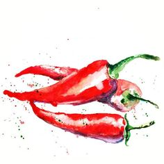 Sunday chilli peppers ️ 13×18, watercolour