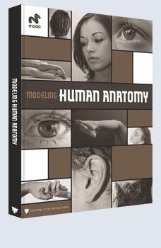 Modeling Human Anatomy - Modo £9.95