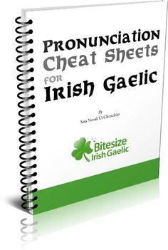 Learn Irish Gaelic.                                                                                                                                                      More