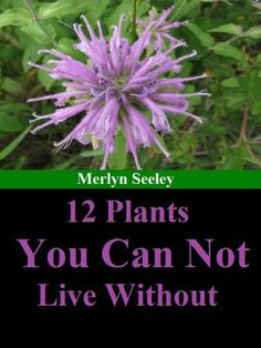 12 plants you can not live without by Merlyn Seeley, http://www.amazon.com/gp/product/B00AD94WBQ/ref=cm_sw_r_pi_alp_kDPUqb0X833NW