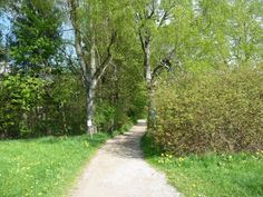 In the Park in Bad Woerishofen, Bavaria - come walk with me