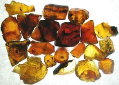 Amber. Not a mineral at all, but still a gem, amber is fossilised tree resin. Used in jewellery since the stone age, it as also been used as incense, perfume and medicine. But not for cloning dinosaurs.