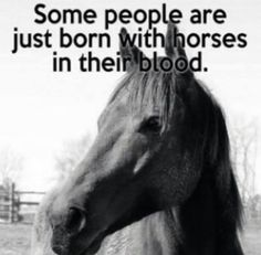 Some people are just born with #horses in their blood
