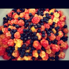 Hand gathered Salmonberries and Crowberries. Treasure trove of natural antioxidants from the tundra wilderness.