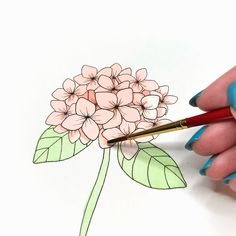 Join Jessica of as she teaches us how to paint a watercolor flower using markers! Watercolor Effects, Watercolor And Ink, Watercolor Flowers, Step By Step Watercolor, Nature Drawing, Line Drawing, Tombow Dual Brush Pen, Online Art, New Art