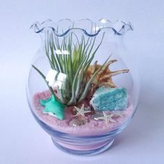 Appears as though pixie nurseries are a genuine hit with respect to DIY planting. Air Plant Terrarium, Garden Terrarium, Terrarium Kits, Leaf Crafts, Shell Crafts, Pink Crafts, Mini Plants, Sand Art, Glass Vessel