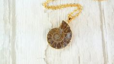 Free Shipping / Ammonite Pendant Nacklace / Natural Stone / Mineral Jewellery / Gift