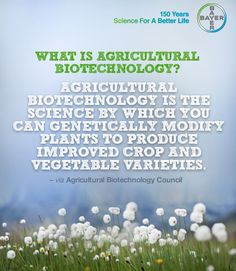 Agricultural biotechnology is the science by which you can genetically modify plants to produce improved crop and vegetable varieties.