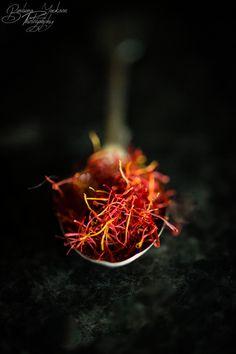 ❧ Herbes aromatiques et épices ❧ Zippertravel.