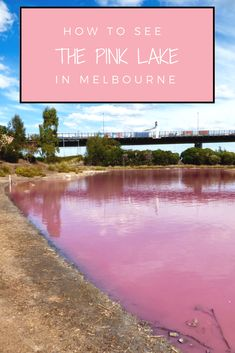 You may have heard of the natural phenomenon that turns saltwater lakes pink. Looking to visit? This guide will help you visit the pink lake in Melbourne.