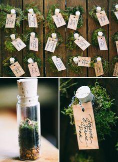 A fun idea for your escort cards: mini test tube terrariums!