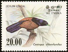 Green-billed Coucal stamps - mainly images - gallery format