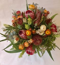 Inexpensive Wedding Venues In Ma Flowers Australia, Bush Wedding, Australian Native Flowers, Online Florist, Floral Wedding, Wedding Flowers, Inexpensive Wedding Venues, Bunch Of Flowers, Bride Bouquets
