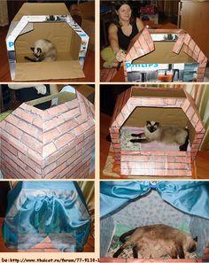 Casa para gato de caja de cartón