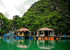 Floating houses in the Ha Long Bay in Vietnam Cat Ba Island, Ha Long Bay, Floating House, Vietnam, Houses, Cabin, Mansions, House Styles, Travel