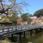 Info on Nara