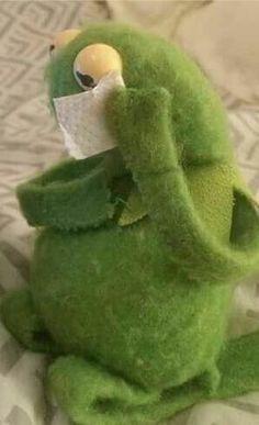52 best Ideas for memes sad kermit Kermit The Frog Meme, Funny Kermit Memes, Cartoon Memes, Funny Relatable Memes, Kermit Face, Meme Pictures, Reaction Pictures, Sapo Kermit, Gavin Memes