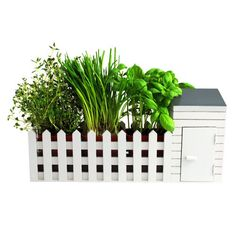 BBTradesales Indoor Allotment Gift Set BBTradesales http://www.amazon.co.uk/dp/B008UREBCI/ref=cm_sw_r_pi_dp_aCx3vb1HXKEEK