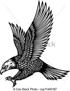 Vector of soaring eagle vector illustration csp11440187 - Search ... Eagle Tattoos, Tattoos Skull, Star Tattoos, Wolf Tattoos, Animal Tattoos, Celtic Tattoos, Body Art Tattoos, Sleeve Tattoos, Hawk Tattoo