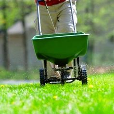 Everything you need to know about fertilizing your lawn.