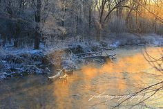 CVNP   clicking on the LIKE button on our Business Page www.facebook.com/photographybybuzz Also,we have a new website that you may purchase our photos please check it out. www.rick-buzalewski.artistwebsites.com