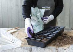 Fyll plantekaret med jord og så frøene i pottene. Tips, Counseling