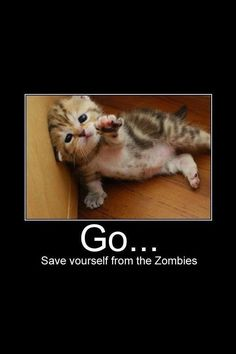 Awww. I remember when me, my sister, and our friend were playing the walking dead with her older brother and we were texting each other and I sent this to her.: