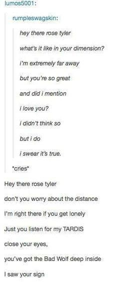 Roae Tyler and The Doctor. A Whovian version of Hey There Delilah by Simple Plan (or maybe the Plane White Tees, I always mix those two bands up ._.)