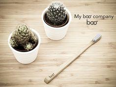 Brosse à dents bambou et cactus