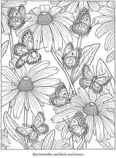 Blue Butterfly Black Eyed Susan Flowers Coloring Pages Colouring Adult Detailed Advanced Printable Kleuren Voor