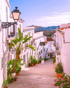 It's time for a break in the form of daydreaming about Spanish vacations. Indoor Garden, Indoor Outdoor, Funky Living Rooms, Beautiful World, Beautiful Places, Spanish Towns, Andalucia, Island Life, Countryside