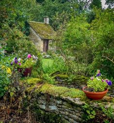 Cozy Country Garden To Make More Beauty For Your Own 13